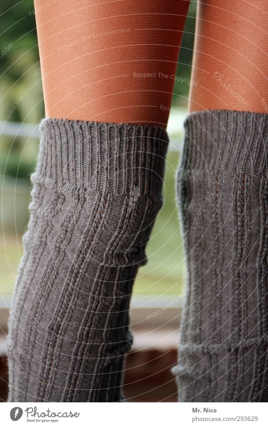 Child Youth (Young adults) Feminine Gray Legs Fashion Brown Infancy Skin Clothing Stripe Cloth Thin 8 - 13 years Material Stockings