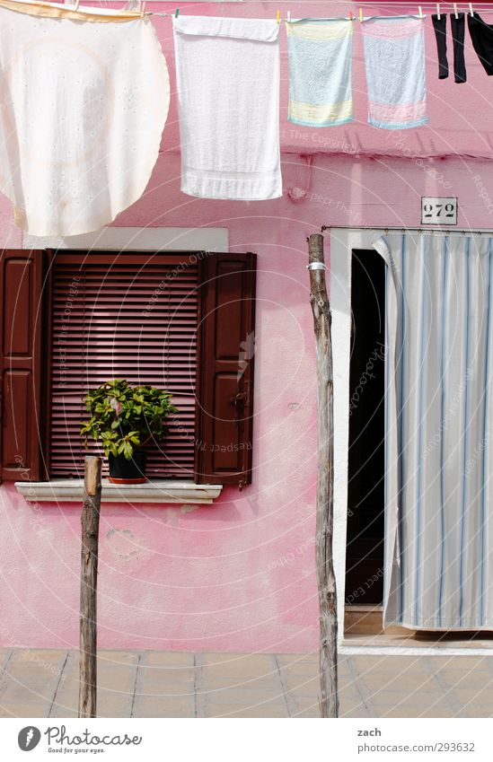 Plant House (Residential Structure) Window Wall (building) Wall (barrier) Pink Door Facade Living or residing Cloth Italy Village Laundry Stockings Wash
