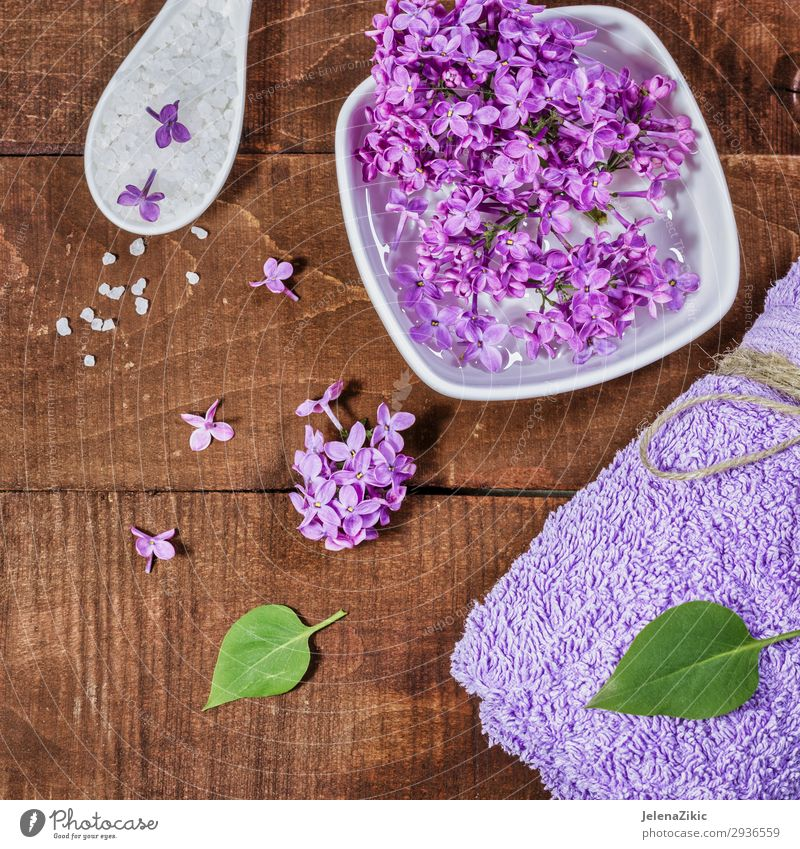 Aromatherapy, wellness and spa with lilac flowers Bowl Lifestyle Beautiful Body Skin Cosmetics Medical treatment Wellness Relaxation Spa Table Nature Flower