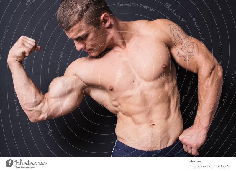 muscular bodybuilder with a tattoo on his arm Human being Youth (Young adults) Naked Young man Healthy 18 - 30 years Lifestyle Adults Natural Sports Health care