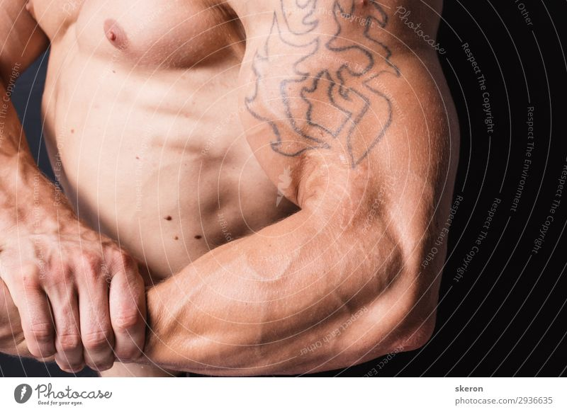 muscular bodybuilder with a tattoo on his arm Human being Youth (Young adults) Man Eroticism 18 - 30 years Lifestyle Adults Natural Sports Fashion