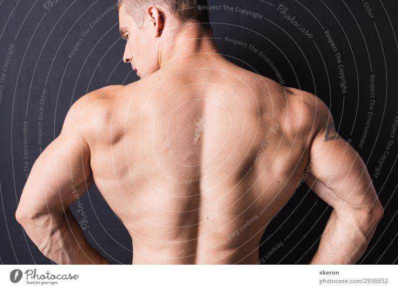 powerful bodybuilder back Human being Youth (Young adults) Man Beautiful Eroticism Healthy 18 - 30 years Lifestyle Adults Sports Party Work and employment