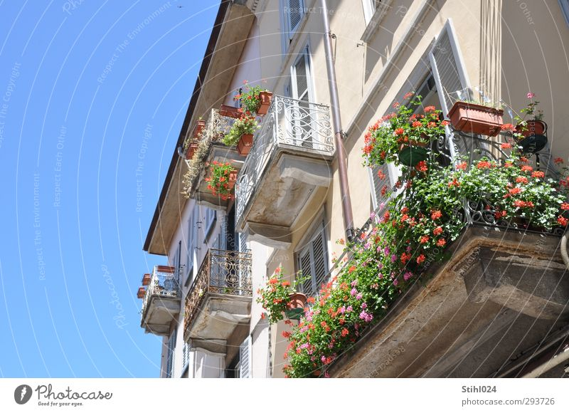 Bella Italia Style Harmonious Summer Flat (apartment) Cloudless sky Como city Italy Town Old town House (Residential Structure) Building Facade Balcony