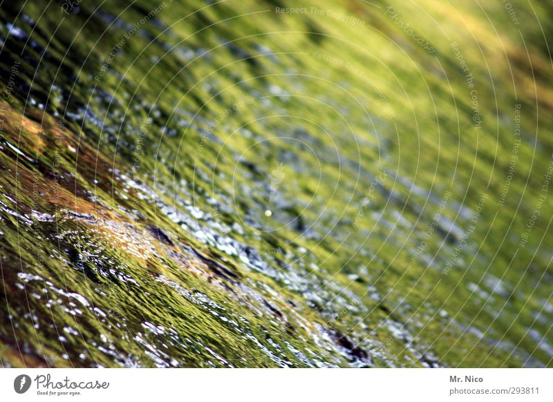 moss ointment Environment Nature Water Lake Brook River Calm Surface of water Reflection Mountain stream Whirlpool Hissing Refreshment Source Clean Fresh