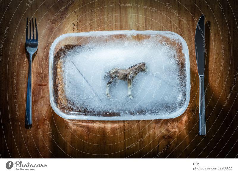 deep-freeze lasagna Food Meat ready meal Frozen foods Nutrition Plate Knives Fork Horse Wood Betray Disgust horse meat Meat scare Deep frozen Ice false beef