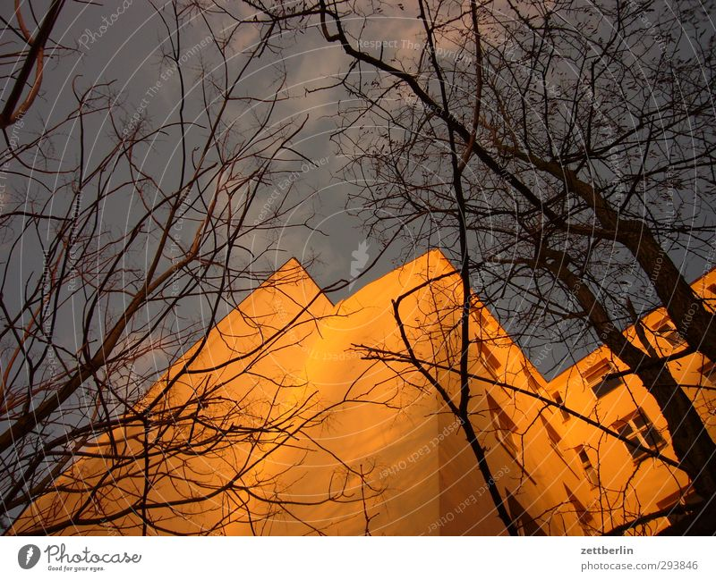 old building Environment Sky Sunrise Sunset Autumn Climate Climate change Weather Beautiful weather Tree Town Capital city Downtown