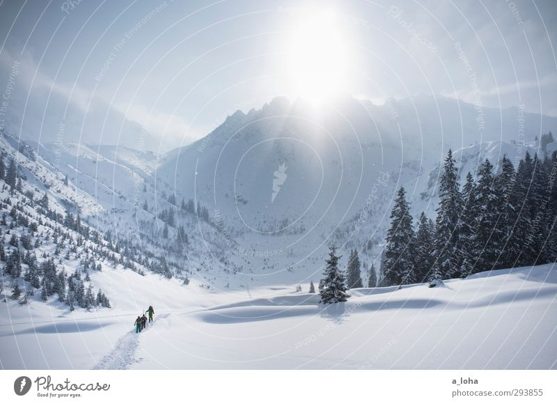 Sky Nature Sun Loneliness Landscape Far-off places Winter Forest Mountain Environment Snow Sports Lifestyle Uniqueness Beautiful weather Adventure