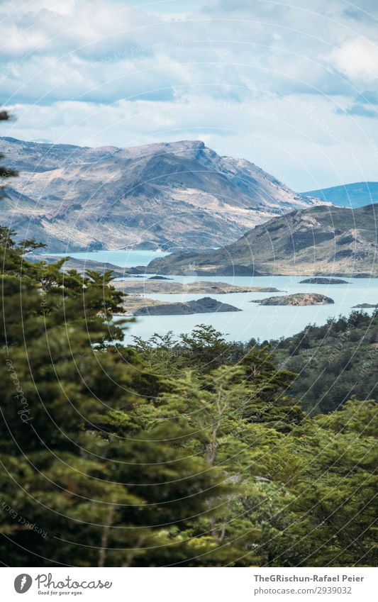 lake Environment Nature Landscape Blue Turquoise Lake Bergen Forest Patagonia Chile National Park Green Clouds Vantage point Wind Weather Colour photo