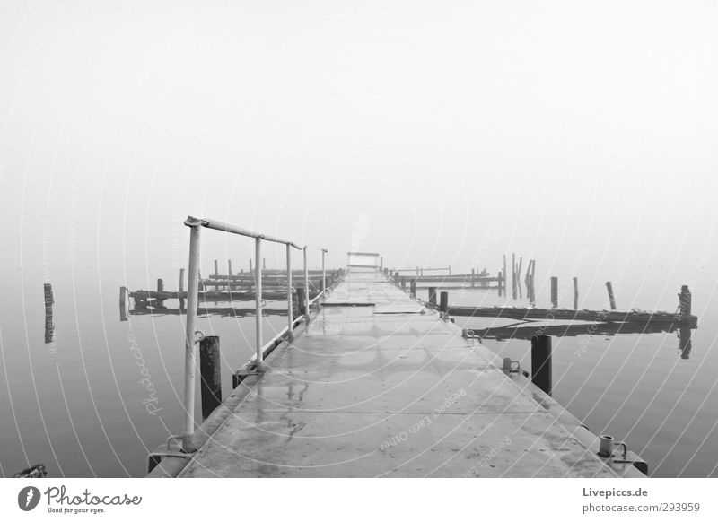 there bridge Nature Landscape Water Sky Clouds Autumn Bad weather Fog Lakeside Bridge Lie Gray Black White Serene Calm Loneliness Stagnating Far-off places