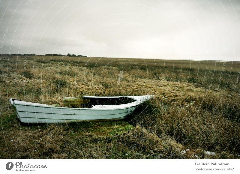 Ocean Loneliness Winter Meadow Autumn Grass Coast Horizon Natural Rain Field Wild Transport Island Bushes Broken