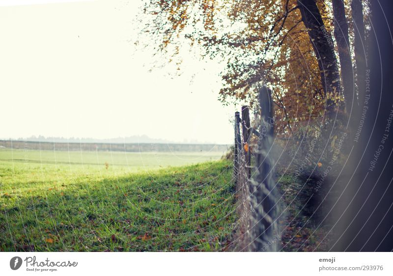 Nature Green Summer Landscape Environment Spring Natural Field Beautiful weather Fence