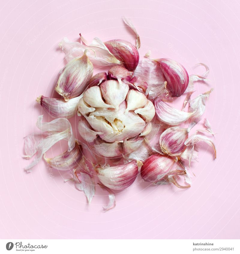 Fresh garlic on a light pink background Copy Space Above Herbs and spices Vegetable Decline Vegetarian diet Conceptual design Raw Organic Minimal Monochrome