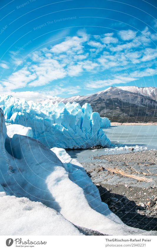 Perito Moreno Glacier Environment Nature Landscape Blue White Coast Lake Iceberg Argentina Walking Discover Snow Mountain Ice sculpture Colour photo