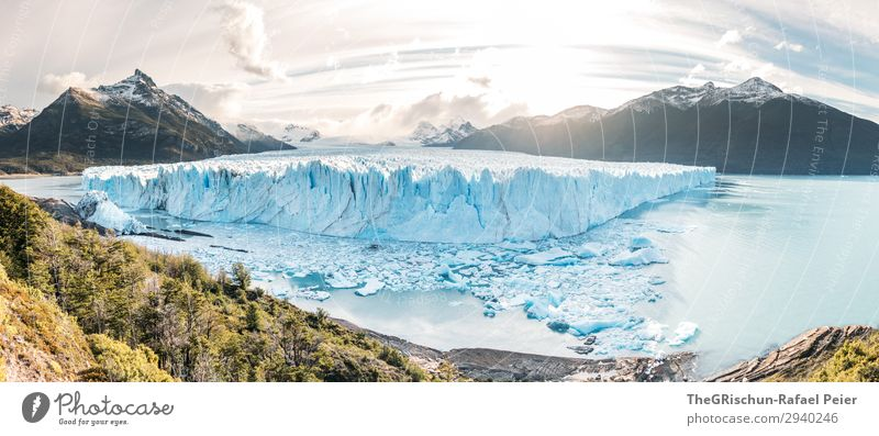 Perito Moreno Glacier - Sunset Nature Landscape Blue Turquoise White Mountain Ice floe Snow Back-light Tree Moody Panorama (Format) Vantage point Argentina