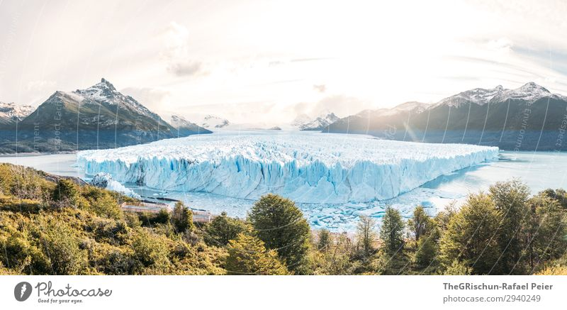 Perito Moreno Glacier in Patagonia (Argentina) - Sunset Nature Blue Turquoise White Snow Ice Tree Back-light Mountain Water Lake Melt Panorama (Format) Clouds