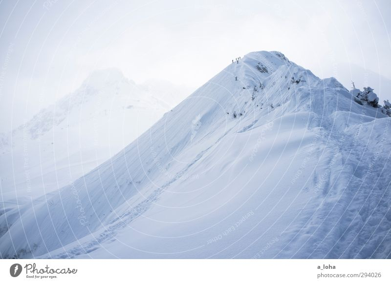 Nature Plant Landscape Far-off places Winter Cold Mountain Environment Snow Sports Lifestyle Line Weather Ice Fog Free