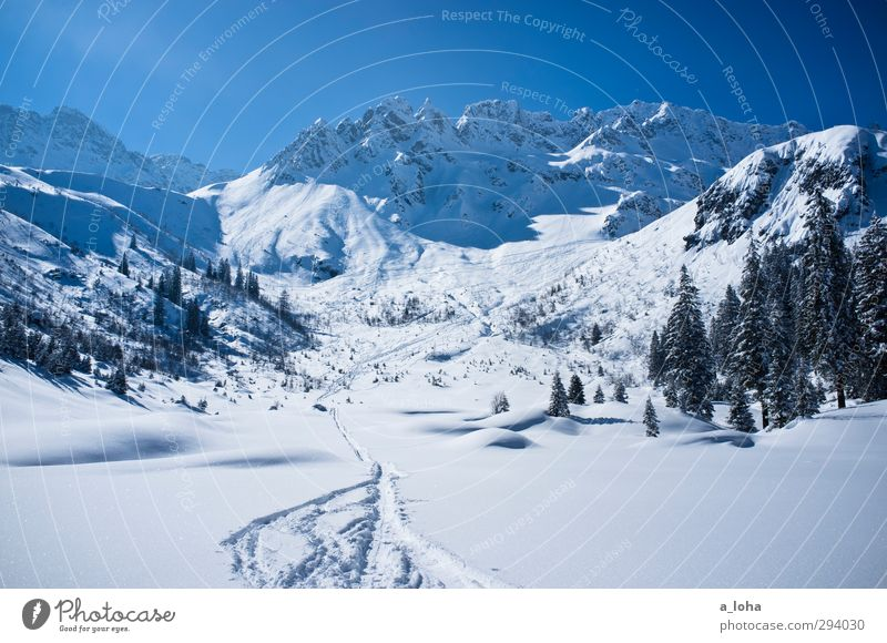 Sky Nature Blue White Tree Sun Loneliness Landscape Winter Environment Far-off places Mountain Cold Snow Rock Line