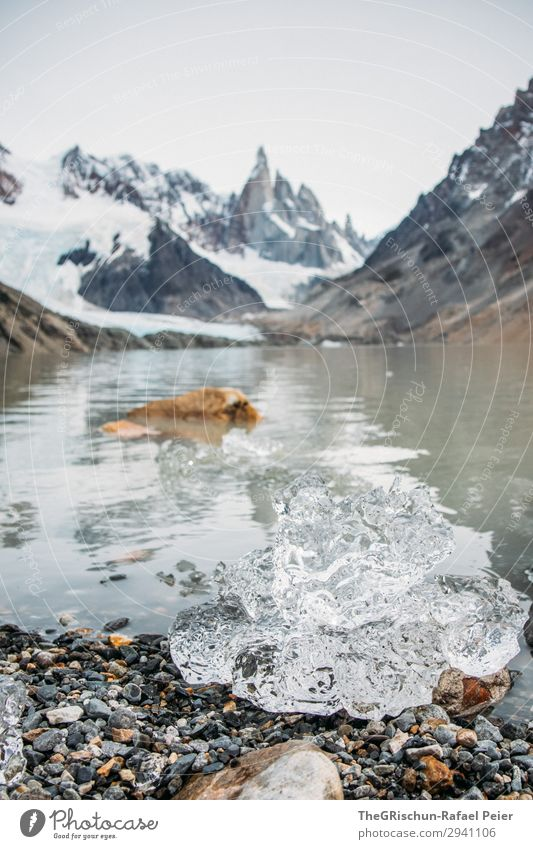 ice Nature Gray White Cerro Torre Ice Water Lake Mountain Glacier Melt Patagonia Stone Colour photo Exterior shot Deserted Copy Space top Copy Space bottom Day
