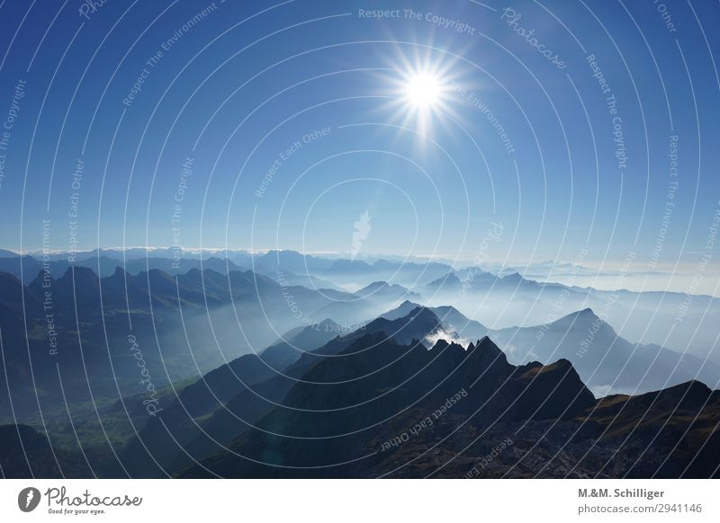 Fog in the alps Landscape Air Sky Cloudless sky Sun Alps Mountain Mount Säntis Cheeserugg Churfirsten toggenburg Blue Safety (feeling of) Calm Contentment