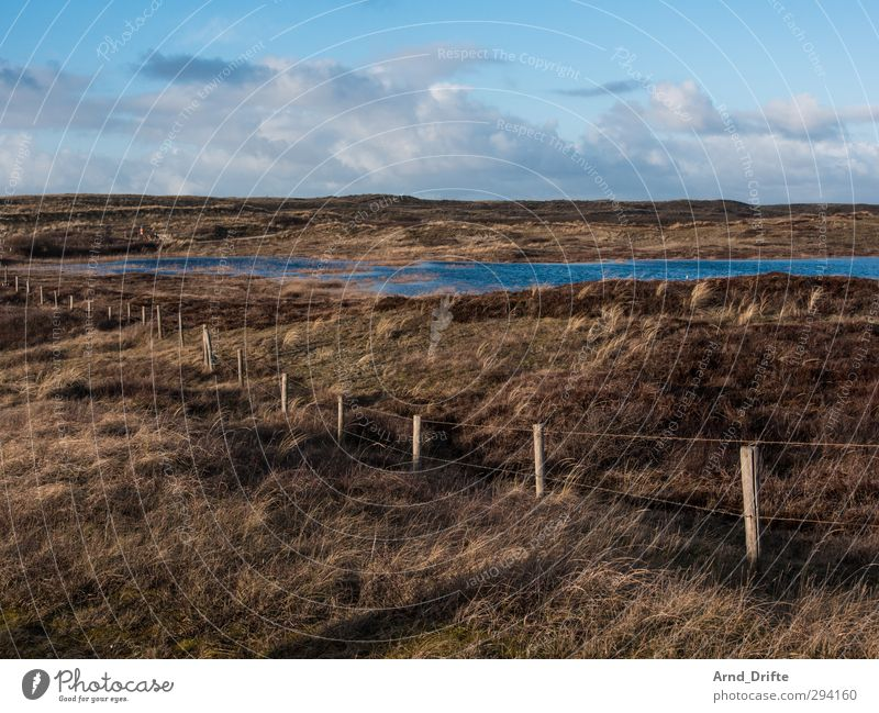 Sky Nature Blue Vacation & Travel Plant Loneliness Clouds Landscape Calm Winter Beach Grass Coast Brown Tourism Trip