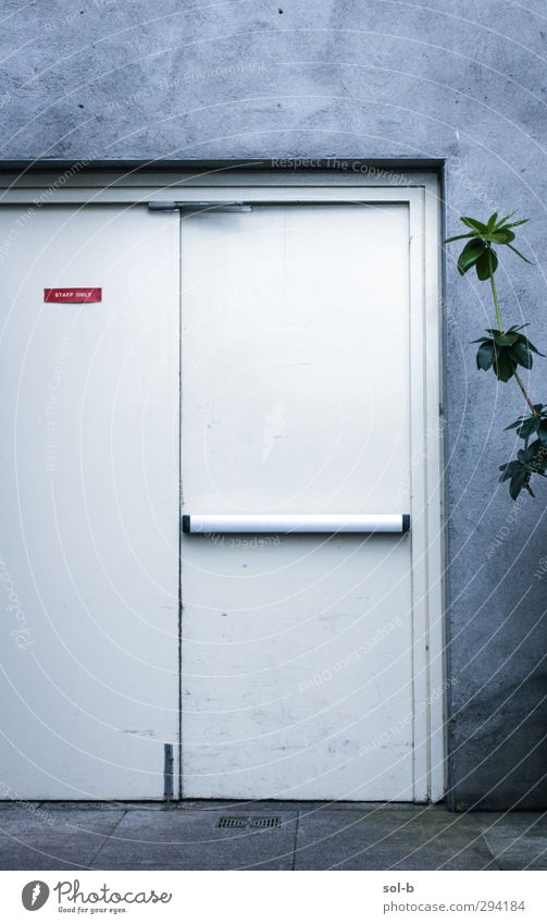 Staff Only White Plant Cold Wall (building) Wall (barrier) Gray Work and employment Door Signs and labeling Closed Dangerous Signage Industry Curiosity