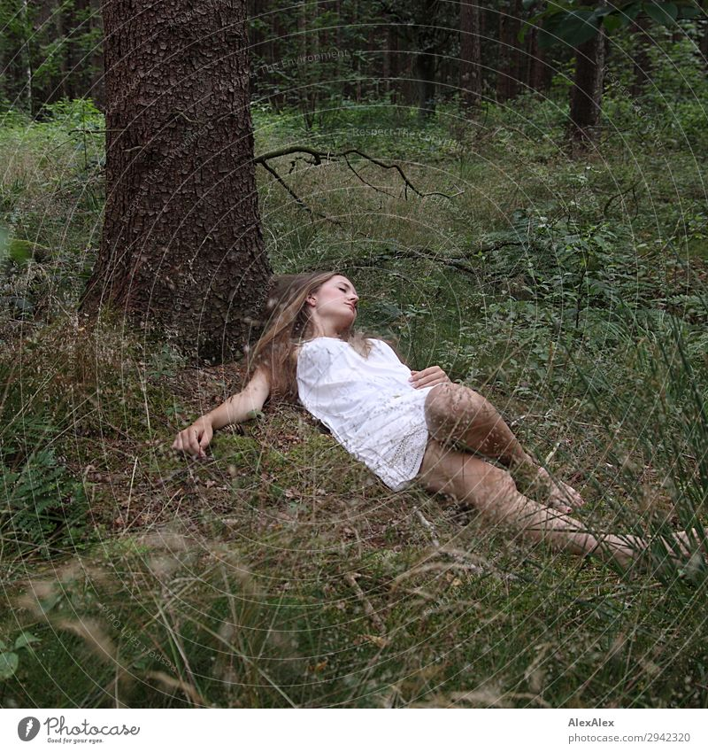 Portrait of a young woman in a forest Joy Beautiful Relaxation Calm Young woman Youth (Young adults) 18 - 30 years Adults Nature Plant Beautiful weather Tree