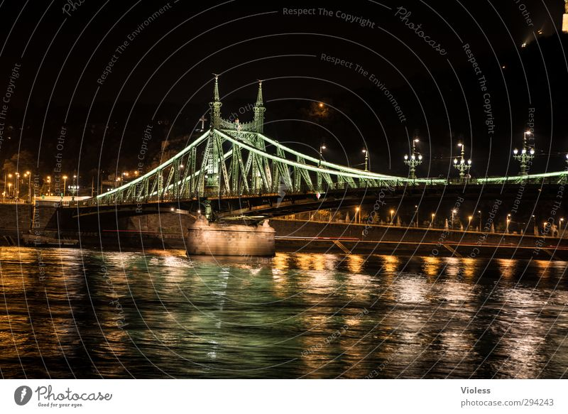 Szabadság híd Capital city Bridge Tourist Attraction Landmark Historic freedom bridge Budapest Danube Colour photo Night Long exposure