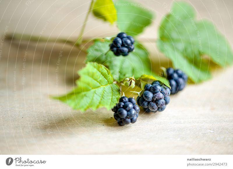 blackberries Food Fruit Blackberry Nutrition Organic produce Vegetarian diet Environment Nature Summer Plant Agricultural crop Fragrance Fresh Healthy Natural