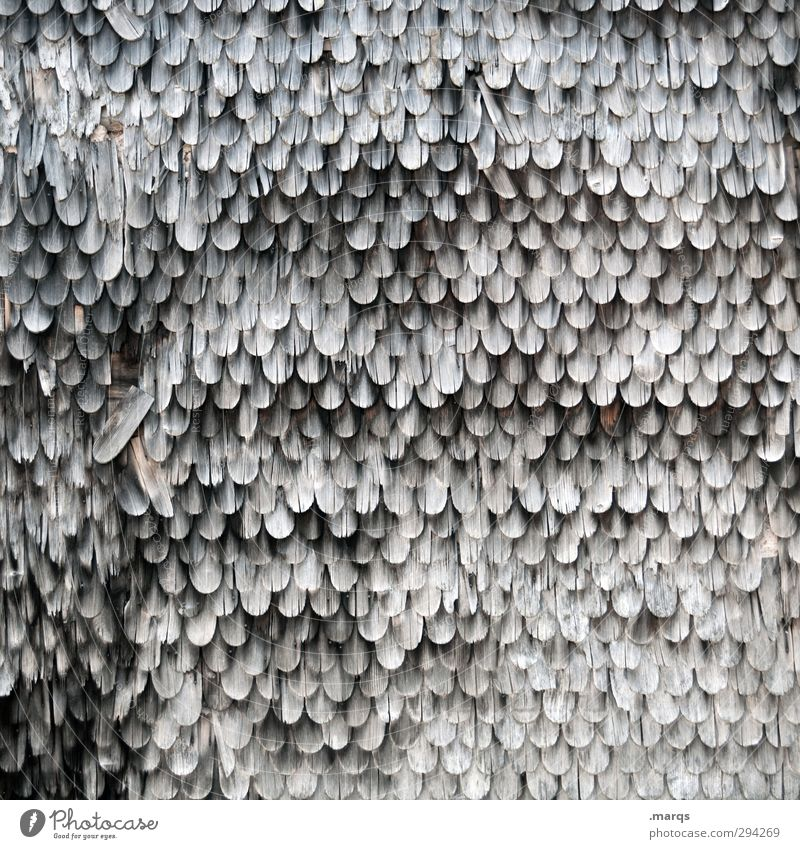 weathered Facade Roofing tile Wood Old Dirty Dark Simple Broken Arrangement Decline Weathered Historic Hut Black & white photo Exterior shot Detail Abstract