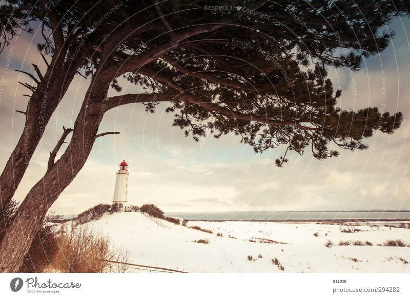 beach guard Ocean Island Winter Snow Environment Nature Landscape Elements Earth Sky Clouds Horizon Climate Weather Beautiful weather Tree Hill Coast Lighthouse