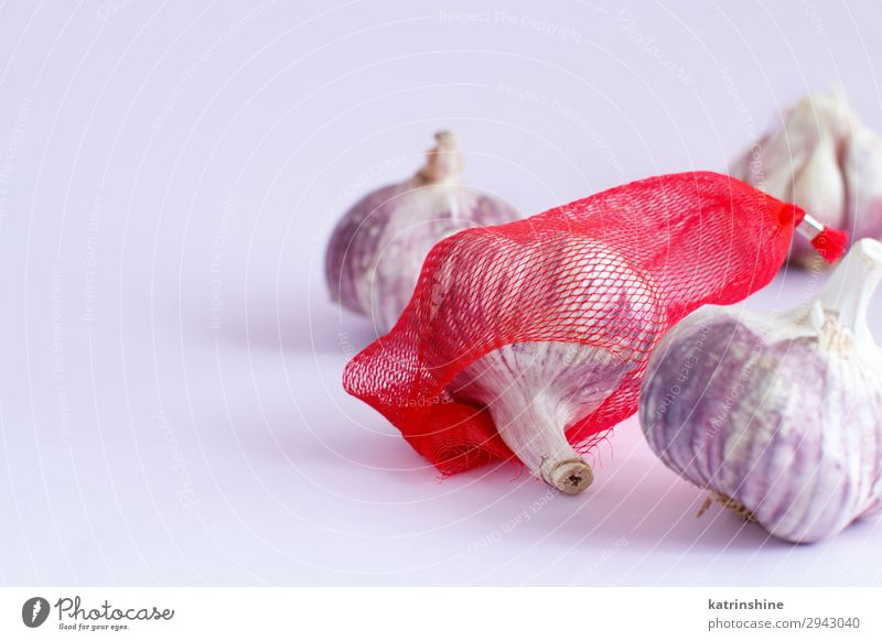 Fresh garlic on a pastel background Copy Space Herbs and spices Vegetable Decline Vegetarian diet Conceptual design Lavender Raw Organic Minimal Monochrome