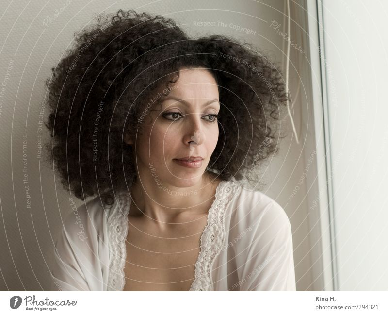 Curly Woman Adults 1 Human being 30 - 45 years Hair and hairstyles Brunette Afro Dream Authentic Bright Beautiful ponder Subdued colour Interior shot