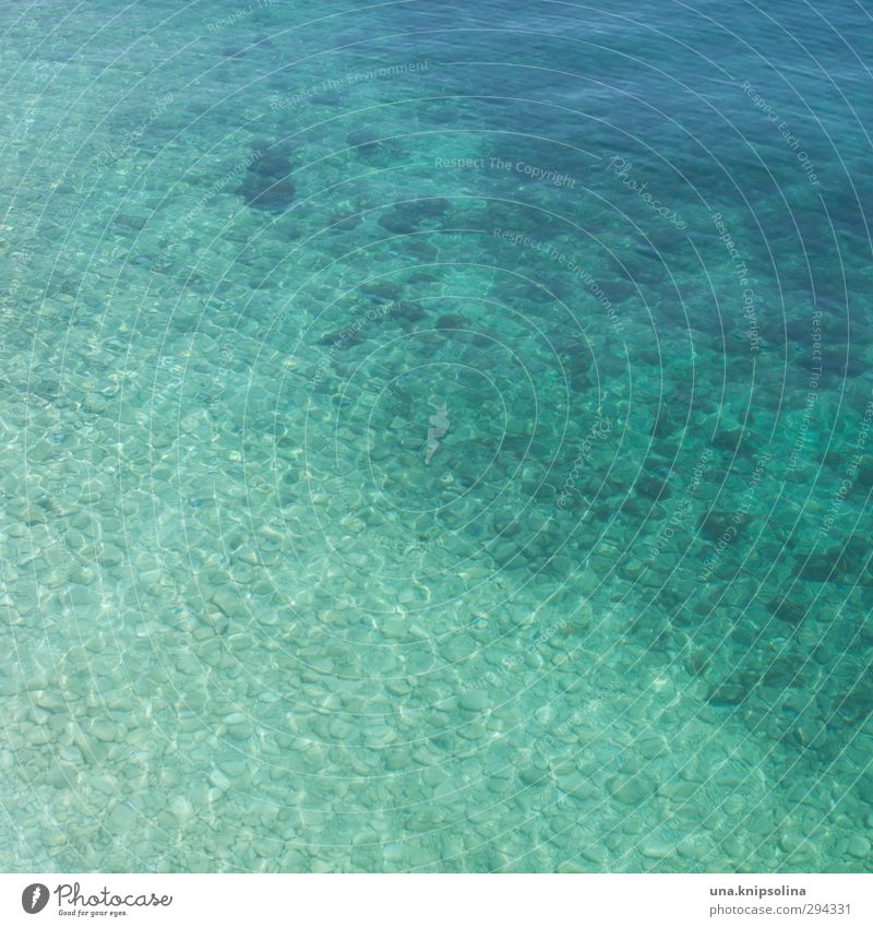 More sea Summer Summer vacation Beach Landscape Waves Ocean Water Fluid Fresh Wet Natural Warmth Blue Turquoise Colour photo Exterior shot Detail Pattern
