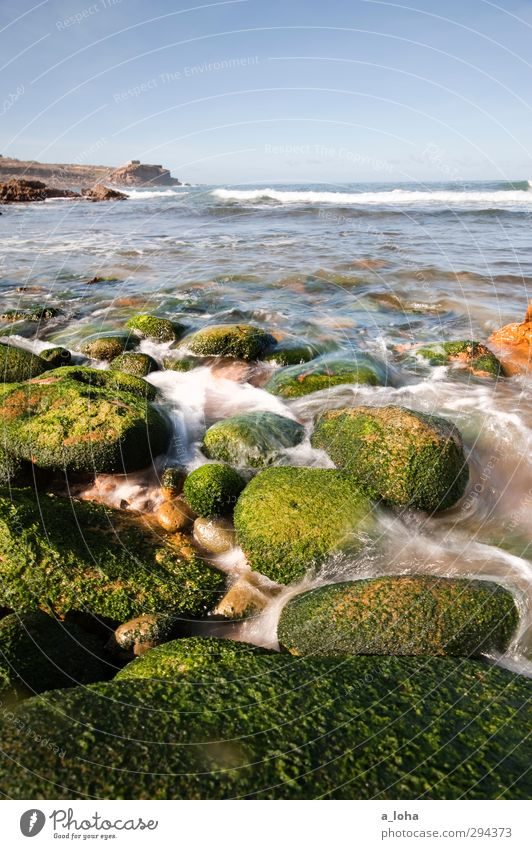 even flow Environment Nature Elements Water Drops of water Cloudless sky Horizon Summer Beautiful weather Warmth Plant Algae Rock Waves Coast Beach Bay Ocean