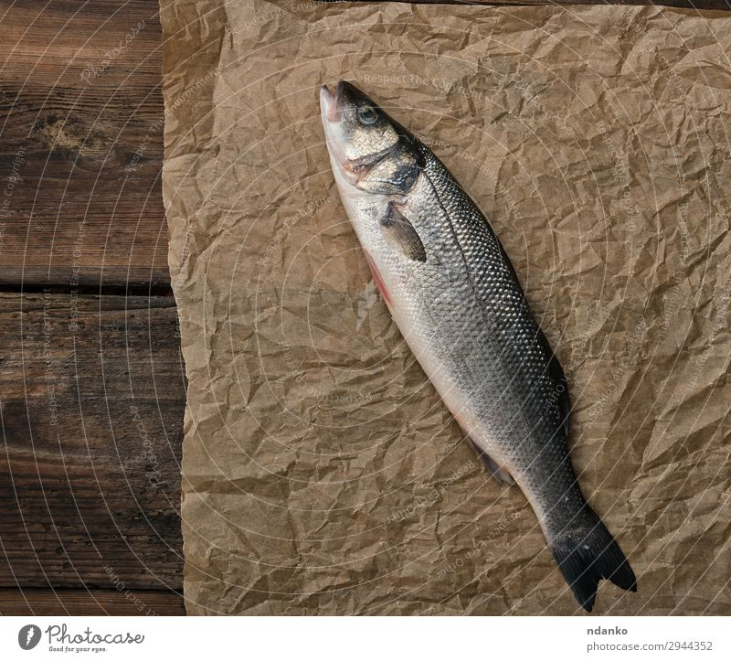 fresh whole sea bass fish Seafood Nutrition Ocean Kitchen Animal Paper Wood Fresh Above Brown Gray Raw labrax cooking board scale one Colour photo Studio shot