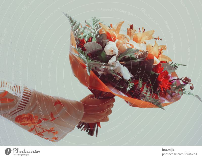 Happy birthday! Environment Nature Plant Summer Flower Fragrance Bouquet Mother's Day Valentine's Day Orange Colour photo Subdued colour Multicoloured