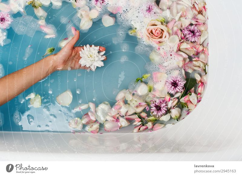 bath with blue water and petals with woman's hand holding flower Aromatic Art Swimming & Bathing Bathroom Bathtub Beauty Photography Blossom Blue Bomb Bouquet