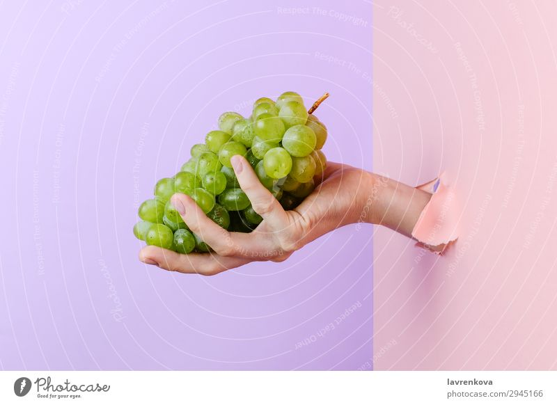 Woman's hand holding ripe green grape Fingers Pastel tone torn paper Manicure Hand Hold Diet Nutrition Delicious agriculture Tasty Raw Eating Mature Sweet
