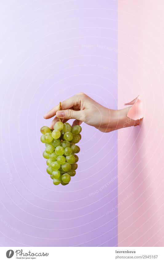 Woman's hand holding ripe green grape Delicious Diet Eating Fingers Healthy Eating Food photograph Fresh Fruit Green Hand Hold Manicure Nutrition Organic