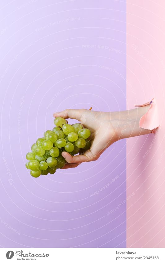Woman's hand holding ripe green grape Agriculture Delicious Diet Eating Fingers Food Healthy Eating Food photograph Fresh Fruit Green Hand Hold Manicure