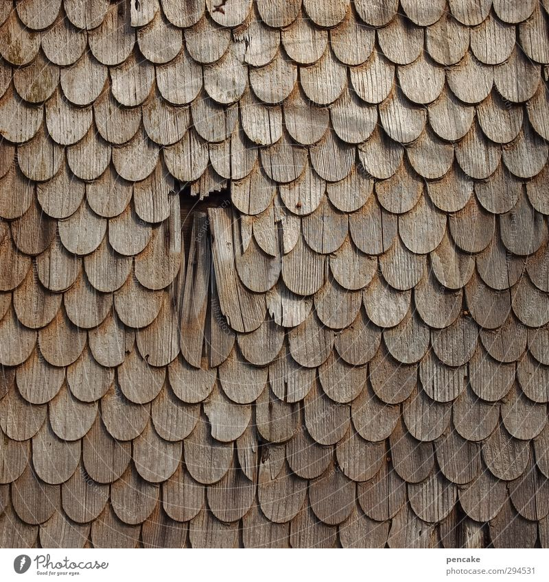 House (Residential Structure) Wood Facade Arrangement Broken Round Tradition Fatigue Hollow Interlaced Surface Symmetry Tongue Repair Weathered Damage