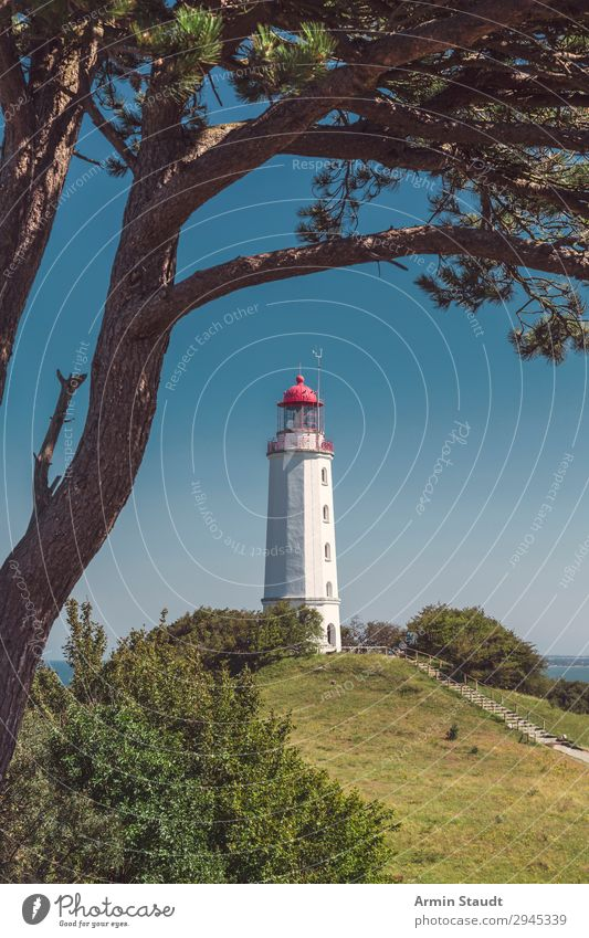 Lighthouse Dornbusch Hiddensee Harmonious Vacation & Travel Tourism Trip Far-off places Summer vacation Island Nature Landscape Cloudless sky Beautiful weather