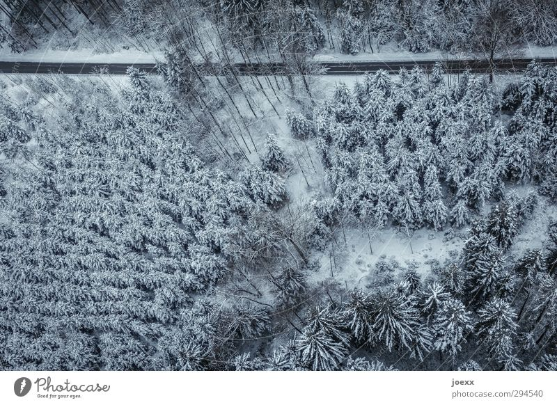 Nature Blue White Landscape Winter Black Forest Environment Cold Snow Street Climate Driving Traffic infrastructure Coniferous forest Winter forest