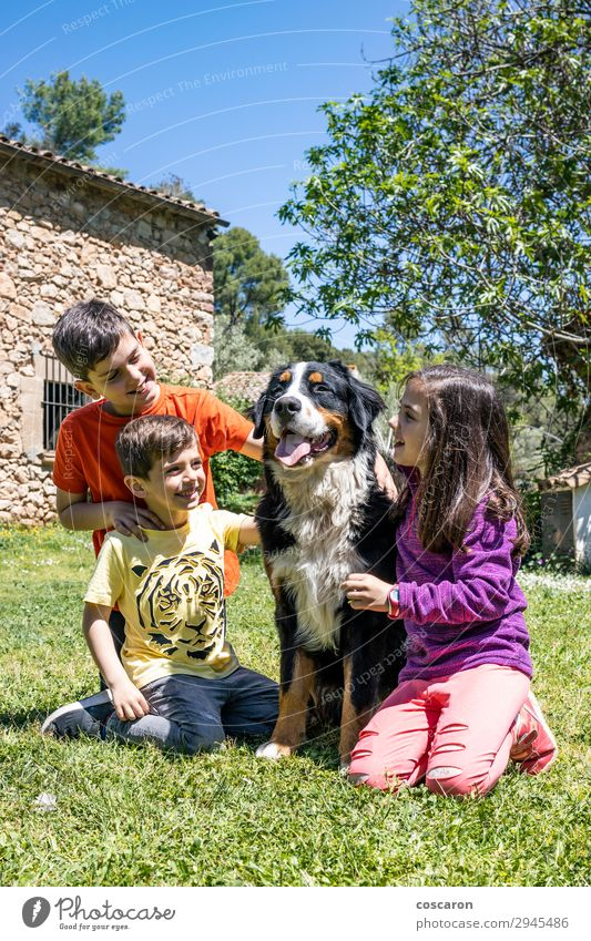Three little kids with a Bernese dog Lifestyle Joy Happy Beautiful Leisure and hobbies Playing Summer Garden Child Human being Toddler Girl Boy (child) Woman