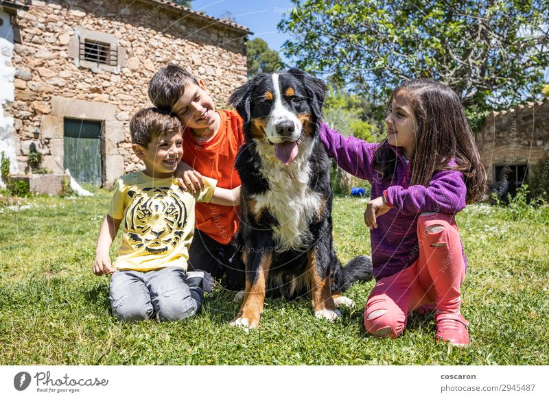 Three little kids with a Bernese dog Child Human being Dog Youth (Young adults) Summer Beautiful Green Animal Joy Girl Lifestyle Yellow Love Spring Feminine