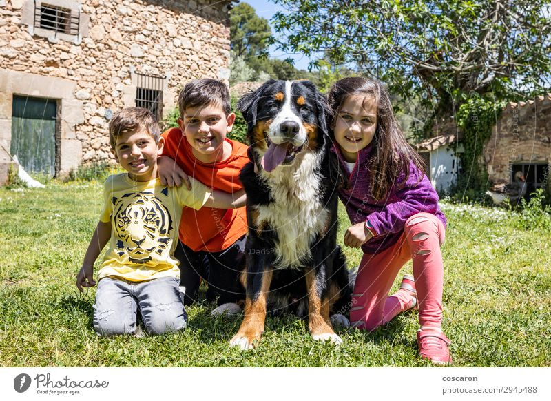 Three little kids with a Bernese dog Lifestyle Joy Happy Beautiful Playing Vacation & Travel Summer Garden Child Human being Masculine Feminine Toddler Girl