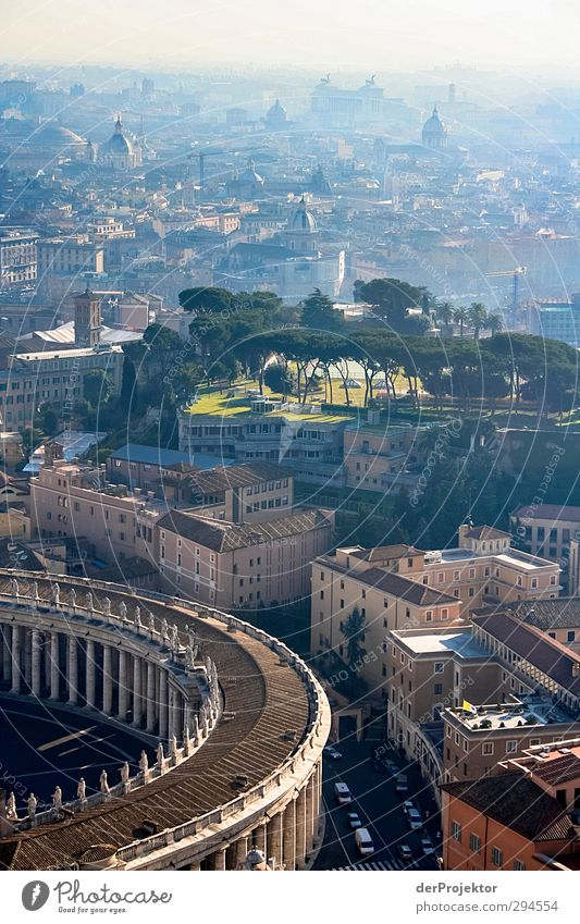 View from St. Peter's Basilica Capital city Downtown Populated House (Residential Structure) Church Dome Palace Park Tourist Attraction Landmark Monument