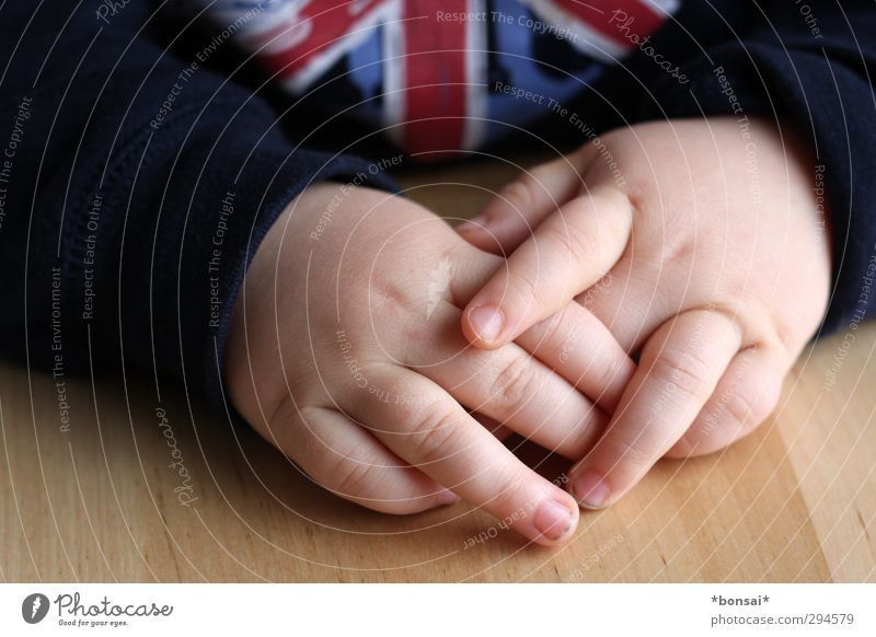 Human being Child Hand Calm Boy (child) Small Infancy Fingers Cute Toddler Safety (feeling of) Sweater Gesture Sympathy Innocent Wooden table