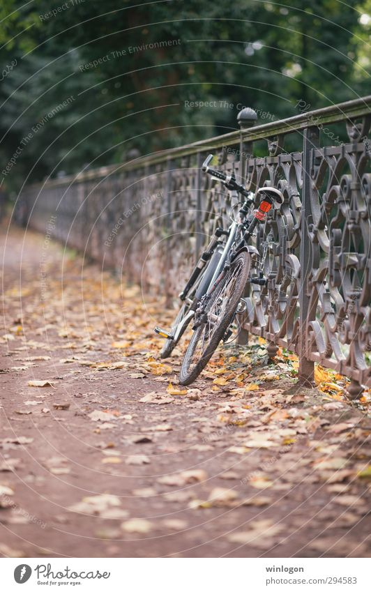 turned off Leisure and hobbies Bicycle Driving Parking Parking lot Fence Tourism Trip Cycling tour Landscape Autumn Beautiful weather Warmth Street Leaf