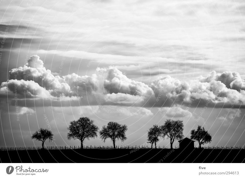 Palatinate Nature Landscape Sky Clouds Beautiful weather Plant Tree Meadow Field Hill House (Residential Structure) Hut Infinity Fence Black & white photo
